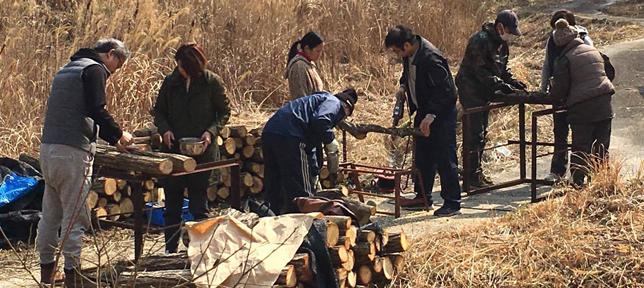 茶山の中でホダ木にしいたけの菌を植えようイベント | あなたの想いをプロデュース Acca