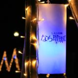 【Photo Album】しあわせ回廊なら瑠璃絵2017 & 奈良公園界隈 | Acca's Website