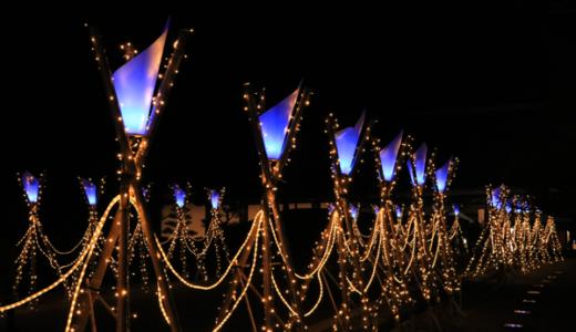 【Photo Album】しあわせ回廊なら瑠璃絵2018 & 奈良公園界隈@奈良県奈良市